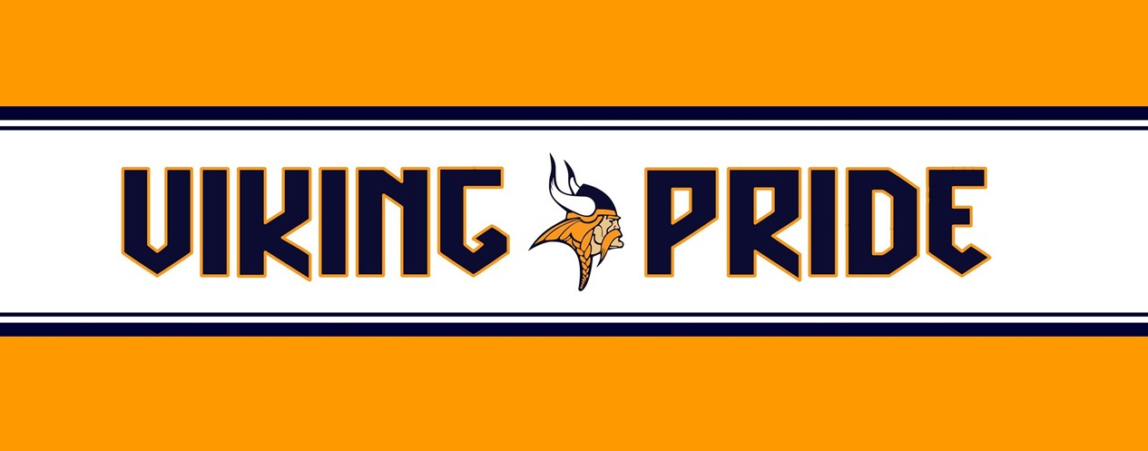 Viking Pride Banner